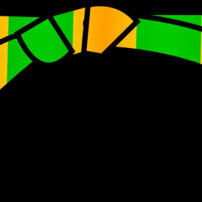 Ceinture orange verte